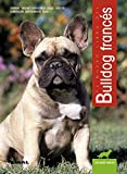 Bulldog Frances/ French Bulldog