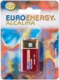 Akku ALKALINE euroenergy 6LF229V