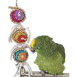 Bird Bite Toy Pet Parrot Macaw africana Greys Budgies Periquitos Cockatiels Conure loro Agapornis Jaula Colgante Toy