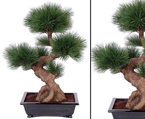 Pinus Bonsai Baum, mit 80 Nadeln, in schwarzer Schale, Höhe ca. 75cm – Kunstpflanze künstliche Pflanzen künstlicher Bonsaibaum
