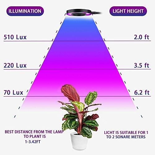 Pathonor Lampe De Plante Lampe De Croissance Dimmable 220v 24w Lampe