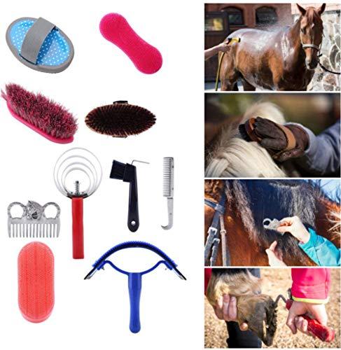 10 Stücke Brush Pflegeset Pferd Pflege Kit Equestrain Pinsel Curry Kamm Pferd Reinigungswerkzeug Set