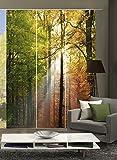 wohnfuehlidee 3er-Set Flächenvorhang, Deko blickdicht, WALD, Höhe 245 cm, 3x Dessin