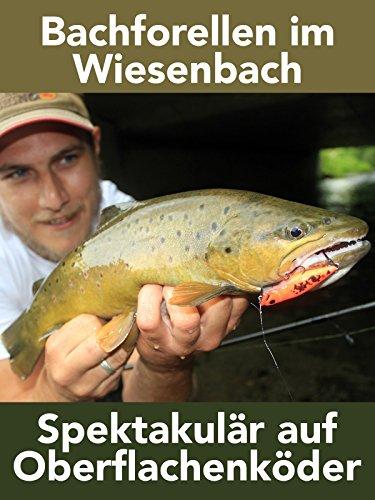 Bachforellen im Wiesenbach - Spektakulär auf Oberflächenköder