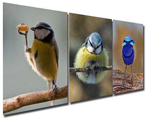 Gardenia-geschenk-set (Gardenie Kunst Schelmische und Cute Birds Kunstdruck auf Leinwand Modernes Wandtattoo Kunst Gemälde gespannt und gerahmt Kunstwerk für Raum Dekoration, 30,5x 40,6cm, gerahmt, 3PCE/Set)