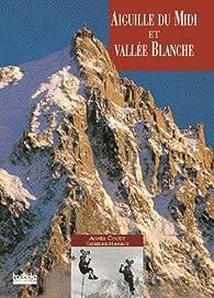 Aiguille du Midi et la Vallée Blanche par Agnès Couzy