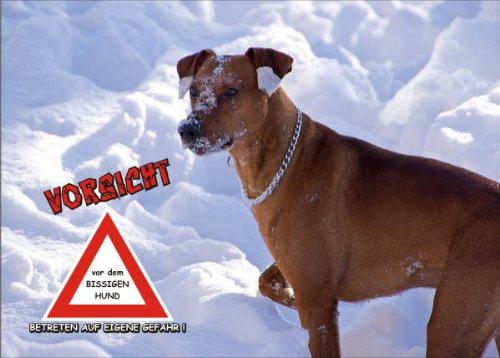ild FunSchild - SE640 DIN A5 ACHTUNG Hund Öster. Pinscher - für Käfig, Zwinger, Haustier, Tür, Tier, Aquarium - aus hochwertigem Alu-Dibond beschriftet sehr stabil ()