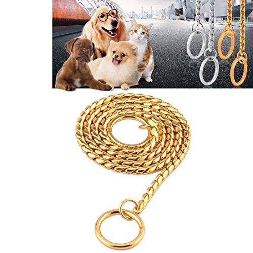 XUJW-PET Haustier Halsbänder Pet Neck Strap Hund Halsband Schlange Kette Hund Kette Solid Metall Kette Hund Halsband, Länge: 50cm ( Color : Gold ) (Schlange Kette Halsband Hund)