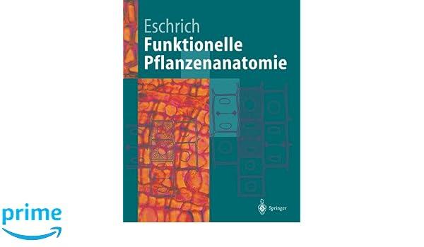 Funktionelle Pflanzenanatomie (Springer-Lehrbuch): Amazon.de: Walter ...