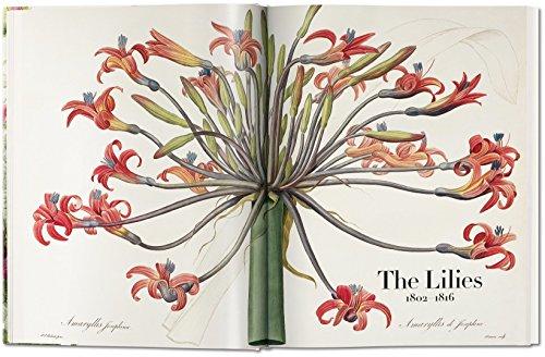 Zoom IMG-1 il libro dei fiori lingua