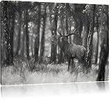 röhrender Hirsch Kohle Effekt, Format: 120x80 auf Leinwand, XXL riesige Bilder fertig gerahmt mit Keilrahmen, Kunstdruck auf Wandbild mit Rahmen, günstiger als Gemälde oder Ölbild, kein Poster oder Plakat
