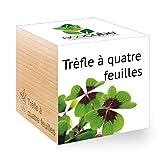 Feel Green Ecocube Trèfle À Quatre Feuilles, Idée Cadeau (100% Ecologique), Grow-Your-Own/Kit Prêt-à-Pousser, Plantes Dans Des Cubes En Bois 7.5cm, Produit En Autriche