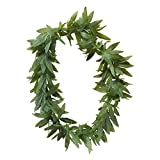 Widmann - Hawaiikette Blätter