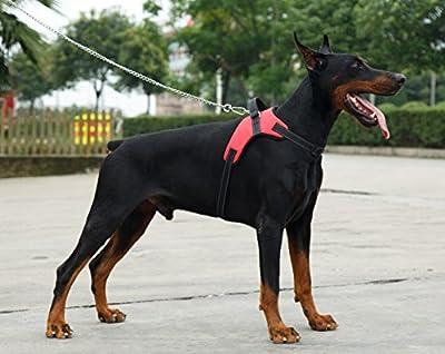 Everyday dog accessories Sicherheit vor Reihe Hundegeschirr, verhindert Zerren 3M Warnweste für Hunde Einfach Kontrolle (Oxford Gepolsterte Rot, Große)
