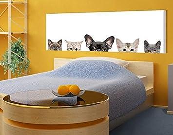 Stampa su tela Cats With Puppy Dog Eyes Panorama, quadri su tela ...