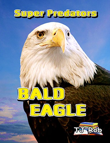Bald Eagle: (Ages 6-8) (English Edition) - Juvenile American Bald Eagle