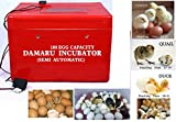 DAMARU 100 Egg Capacity Semi Automatic Thermocol Incubator/Chicken Ducks, Pigeons Quail Hatchery Machine