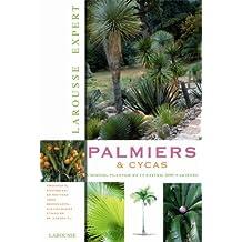 Palmiers et cycas