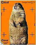 """Best Caldwell peel - Caldwell Orange Peel Vermin Target 7"""" 10 Review"""