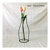 BGDRR Iron Vases Plants Shelving Decoration Home Flower Crafts Desktop Decoration Ikebana Flower Arrangements (Color : 6)