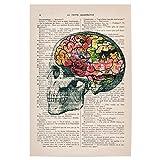 artboxONE Poster 60x40 cm Floral Flower Brains hochwertiger Design Kunstdruck - Bild Floral von Coming Soon Art