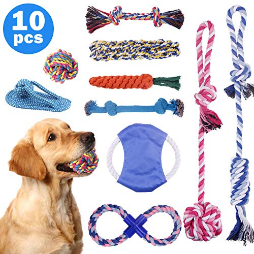 Minterest 10 Piezas Kit de Juguetes para Perros
