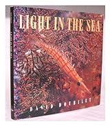 Light in the Sea