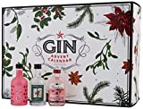 Advent Gin Calendar 2017 Edition