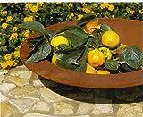 Runde Rostschale - Klein - Durchmesser 30cm - Indoor & Outdoor - Gartendekoration