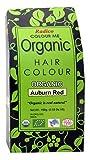 Radico Colour Me Organic Pflanzenhaarfarbe Kastanienrot (bio, vegan, Naturkosmetik) kastanienrot