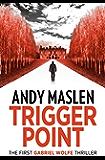Trigger Point: A Gabriel Wolfe thriller (The Gabriel Wolfe Thrillers Book 1) (English Edition)