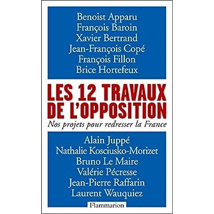 Les 12 travaux de l'opposition: Nos projets pour redresser la France (DOCS, TEMOIGNAG)