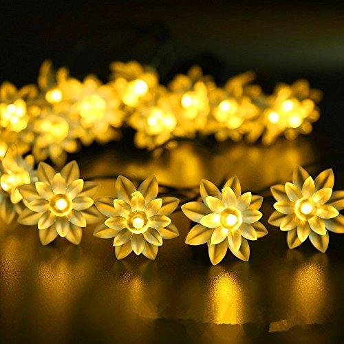 paracity Outdoor Solar Lichterkette 16FT 20LED Lichterkette Lampen Urlaub Weihnachten Party Girlanden Solar Garten Wasserdicht Lichter -