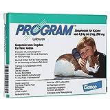 Elanco Deutschland GmbH Program Suspens.f.katzen v.4,5-9 kg/266 mg Ampulle 6 stk
