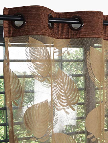 check MRP of brown curtains for living room Story@Home