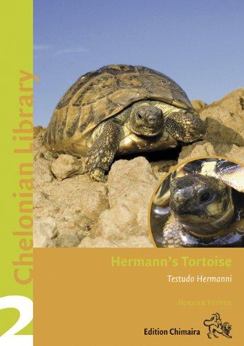 Chimaira Chel.Lib.2 Hermann's Tortoise