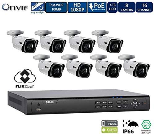 Flir Digimerge IP Security Kamera Sytem mit Dnr400P Serie 2 Festplatteneinschübe Nvr Und Flir N243Bw2 2Mp Außennetz mit Vandalismusschutz Kugelkamera (8 Einschuss kameras mit 16-Kanal-4Tb NVR) - Lorex-security-kamera