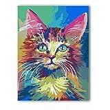 Fannys Malen nach Zahlen XXL 40x50 cm Leinwandbild Katze Bunt Aquarell verschwommen Tierwelt inkl. Zubehör