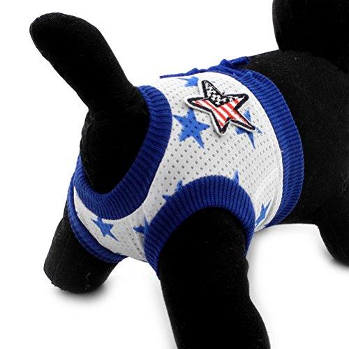 Pee Wee Hose (zunea waschbar wiederverwendbar Fünf Star Small Pet Puppy Hund Sanitär Windeln Hose Baumwolle Soft Unterwäsche kurz still physiologischen täglichen Gebrauch)