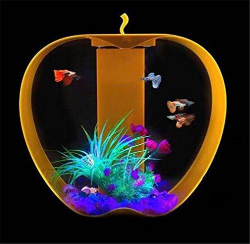 maidiao-use-aquarium-de-bureau-petit-creative-acrylique-transparent-led-en-plastique-rservoir-de-poi