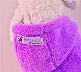 PAWZ Road Hundepullover Hoodie Mantel im Schaf – Design in 5 Farben erhältlich - 4