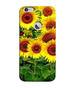99Sublimation Designer Back Case Cover for Apple iPhone 6 (Logo View Window Case) (Vertical pattern , horizontal design cases , parallel design case)