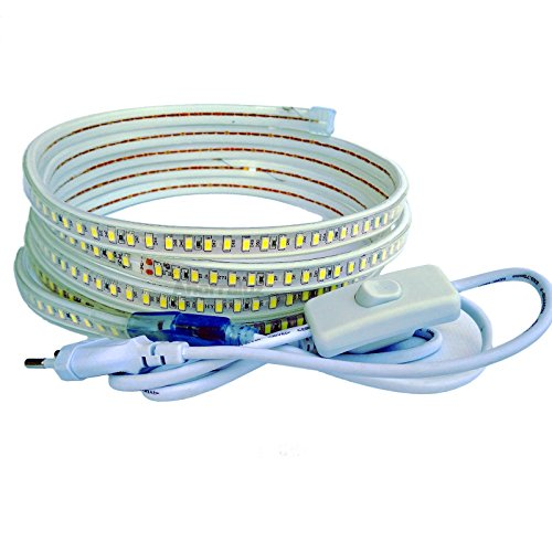 Tira Led de 220v 5730 120 Led/m con INTERRUPTOR. IMPERMEABLE Blanco Frío o Cálido Waterproof IP67 strip 5630 (1M, Blanco Frío)