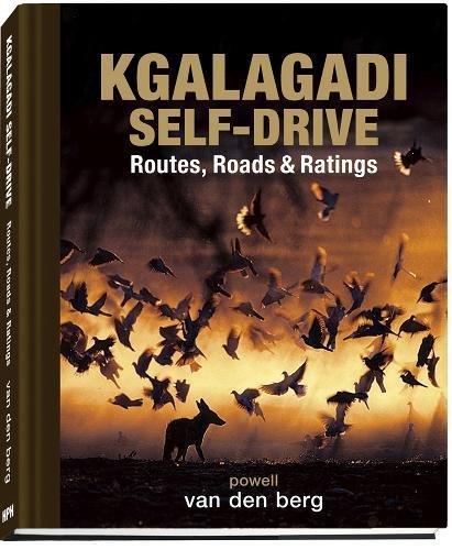 Kgalagadi Self-drive