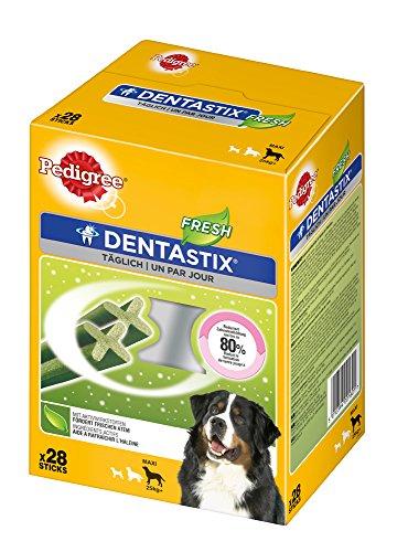 Pedigree DentaStix Fresh Hundeleckerli für große Hunde / Kausnack gegen Zahnsteinbildung / Für gesunde Zähne und einen frischen Atem / 28x4 Stück