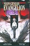 Neon Genesis Evangelion 11: Volume 11