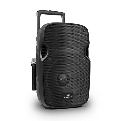 Malone PW-2912 • aktive PA Box • 2-Wege-Lautsprecherbox • PA-Lautsprecher • 700W max • 12\'\' Subwoofer • MP3-fähiger USB- / SD- / MMC-Port • Norm-Stativflansch • 2 x VHF-Funkmikrofon • Akku • schwarz