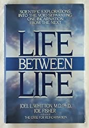 Life Between Life: A Scientific Explorations into the Void Separating One Incarnation from the Next