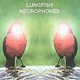 Songtexte von Lungfish - Necrophones