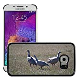 Grand Phone Cases Bild Hart Handy Schwarz Schutz Case Cover Schale Etui // M00141005 Cape Barren Gänse Gänse Tier // Samsung Galaxy S6 EDGE (Not Fits S6)